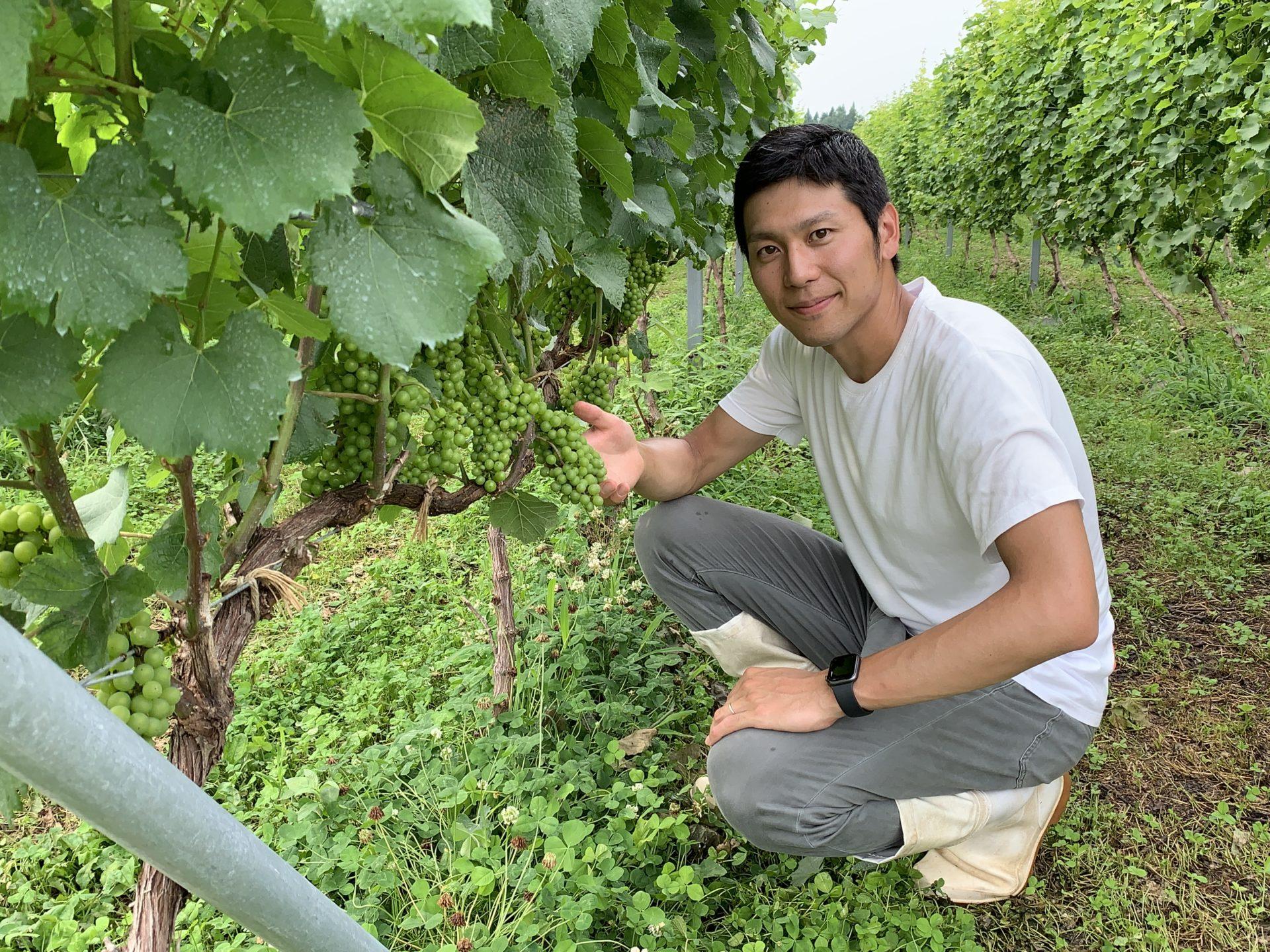 日本一ブドウ栽培が大変な地域からの挑戦